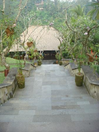 Hanging Gardens of Bali: Down the stairs