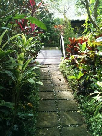 Fivelements Bali Retreat: Pathway from the villa