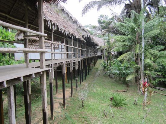 Amazon Explorama Lodges: Walkway to the dining area