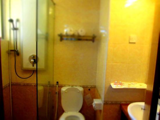 Muar Traders Hotel: Shower wit No Tub