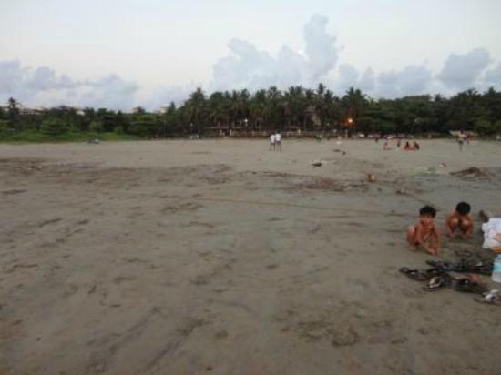Swimsea Beach Resort: beach side