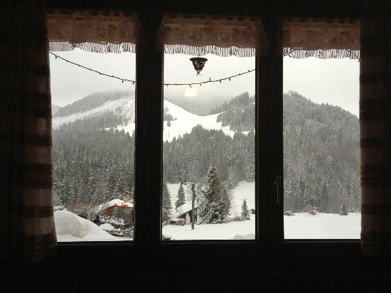Auberge du Lac des Joncs : View from the restaurant