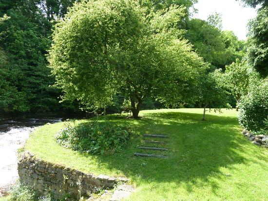 Dilston Mill B&B: Garden