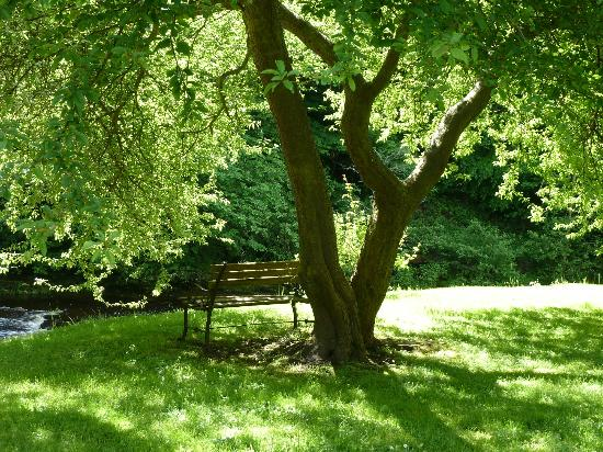 Dilston Mill B&B: Bench seat overlooking river