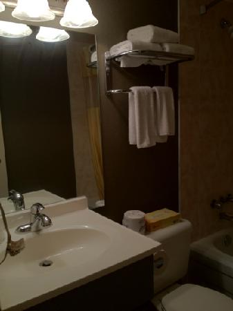 Days Inn Niagara Falls Fallsview: nice little bathroom