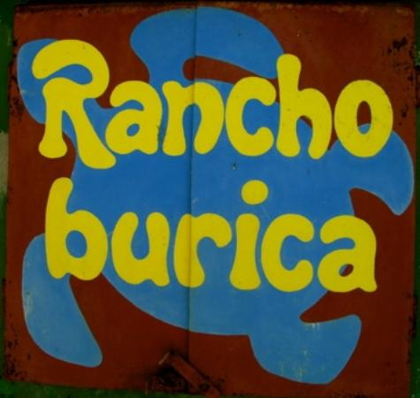 Rancho Burica: Welcome