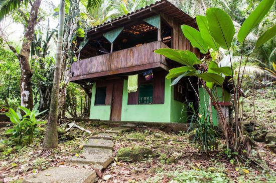 Rancho Burica: Jungle Lodge