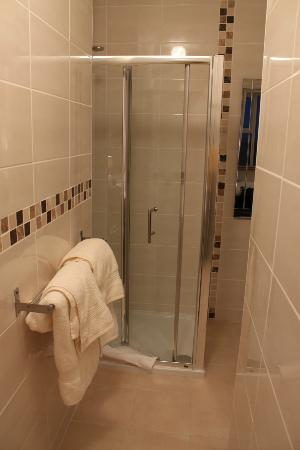 Clonmore Lodge: spacious shower