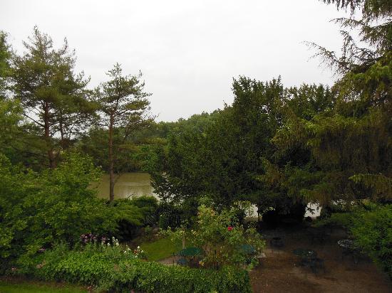 Auberge du Port des Roches : Jolie terrasse agreable par beau temps