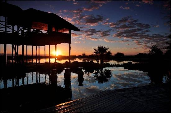 Ditholo Game Lodge: Sunset
