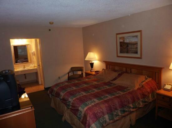 Econo Lodge Freeport: camera