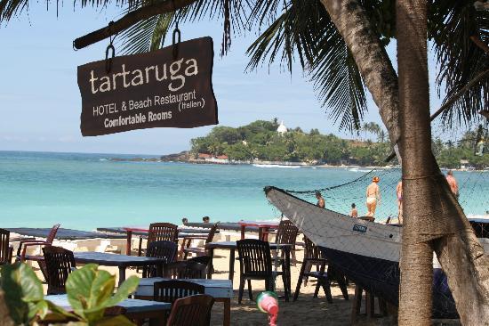 Tartaruga Hotel & Beach Restaurant: meravigliosa vista
