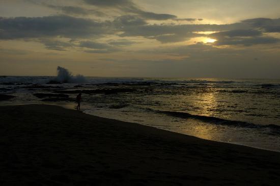 Cala Luna Luxury Boutique Hotel & Villas: Praia da Langosta