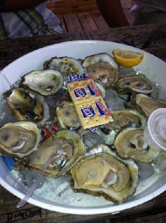 Eddy Teach's Raw Bar : raw oysters