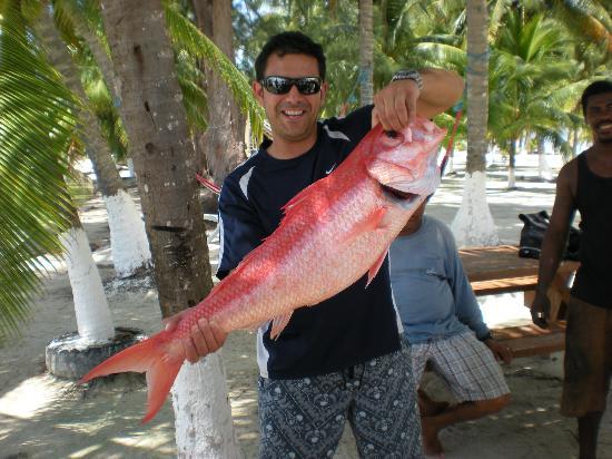 Blue Marlin Beach Resort: Catch of the Day