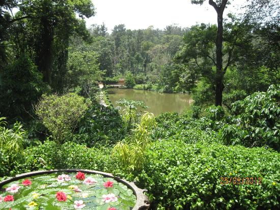 Orange County, Coorg: view from restaurant