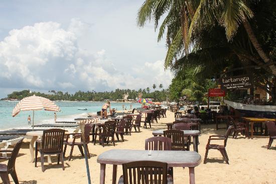Tartaruga Restaurant & Bar : disposizione dei tavoli sulla spiaggia del ristorante Tartaruga