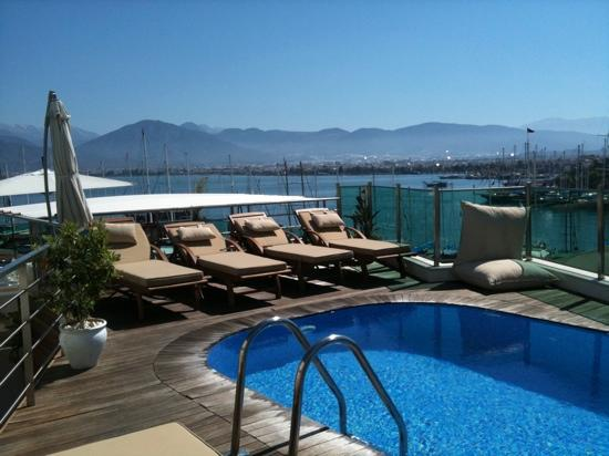 Alesta Yacht Hotel : rooftop pool