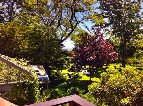 Nauset House Inn: A view of the beautiful grounds and the ocean from the balcony