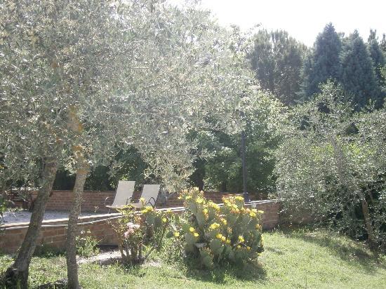 La Bandita Hotel Siena: zona piscina