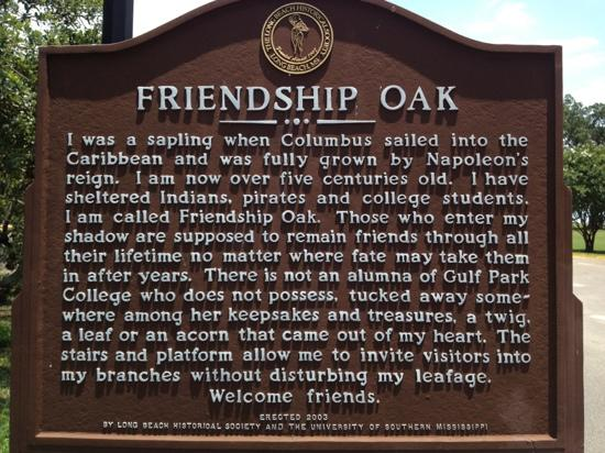 friendship oak historie