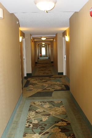 Hilton Garden Inn Valdosta : Hallway