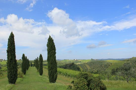 Salvadonica - Borgo Agrituristico del Chianti: Great views