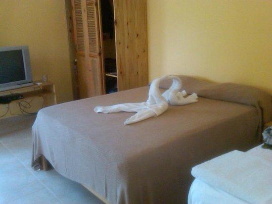Kite Beach Inn: Daily cleaning service w a nice touch:)