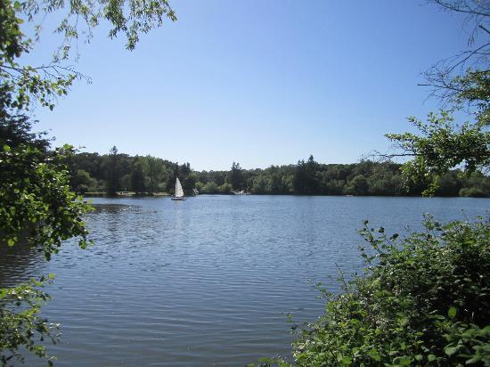 Spring Lake Park: Lakeview looking towards boat ramp