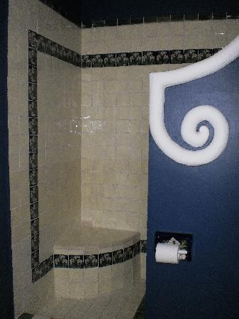 Chapala, Mexico: One of our walk-in showers