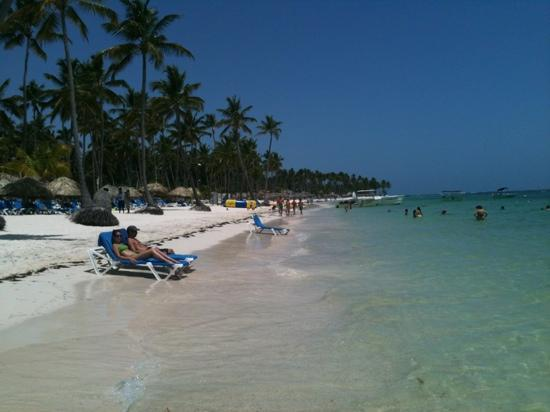 Dreams Palm Beach Punta Cana Another View Of The Beach Showing The Sea Weed Other