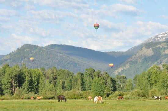 R Lazy S Ranch: parachutes, scenery, horses