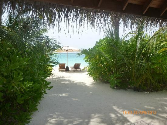 PER AQUUM Huvafen Fushi: view from a beach bungalow patio. private yet still amazing!