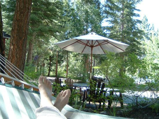 Tahoma Meadows B&B Cottages: One of Several Hammocks for Guests