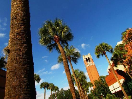 University of Florida : The Century Tower