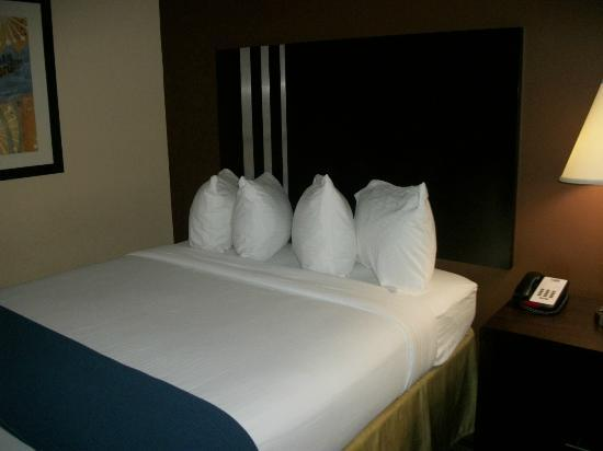 Holiday Inn Express Columbia: One of the queen size beds in our room