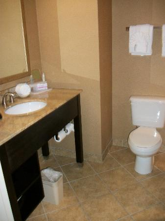 Holiday Inn Express Columbia: Bathroom