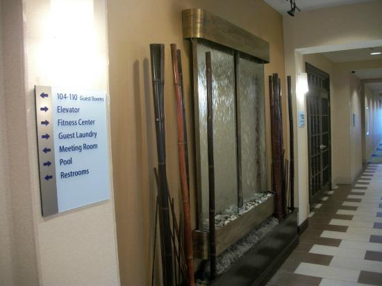 Holiday Inn Express Columbia: Water feature in the hallway/lobby area