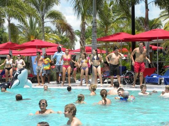 Club Med Sandpiper Bay: piscine