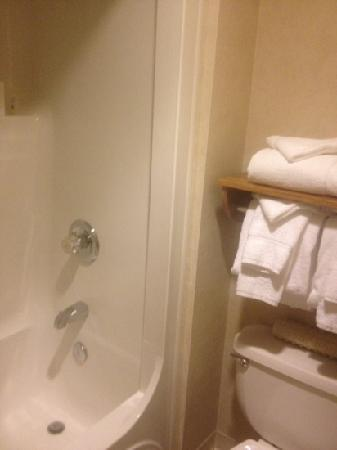 Days Inn Rapid City: bathroom in large suite