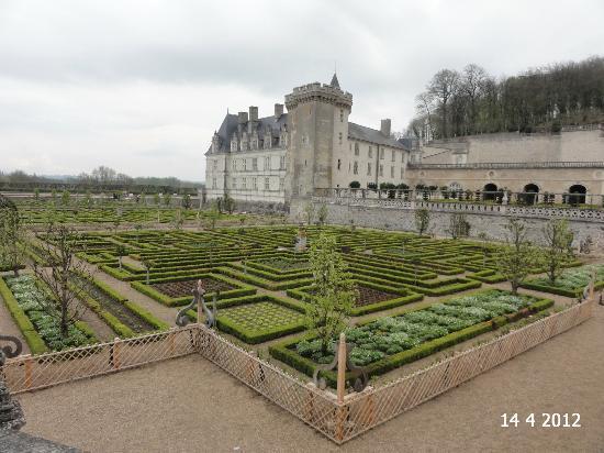 jardin de l 39 amour picture of chateau de villandry. Black Bedroom Furniture Sets. Home Design Ideas