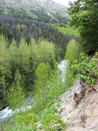 Alaska ATV Adventures: View of Bird Creek from trail