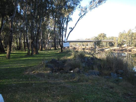 Rivergum Holiday Retreat: View from our campsite