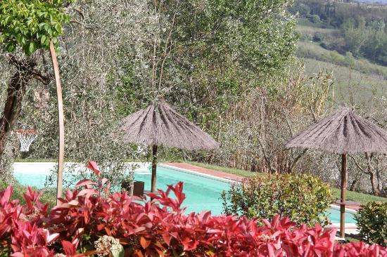 Il Tufo delle Tre Querce: pool area