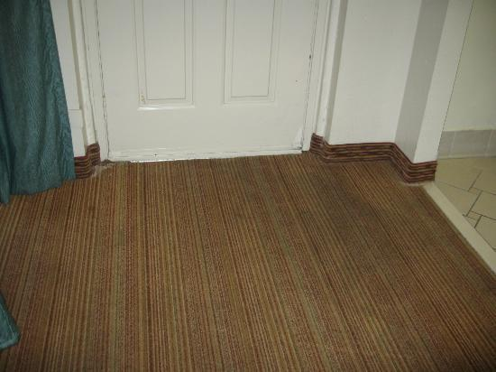 Filthy carpet in room 209 at Red Roof Inn Dallas-Richardson, TX.
