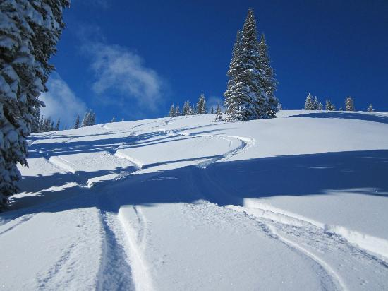 Tamarack Resort: Fresh Tracks