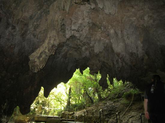 Waitomo Glowworm Caves: Exit of the Waitomo Glow Worm Caves