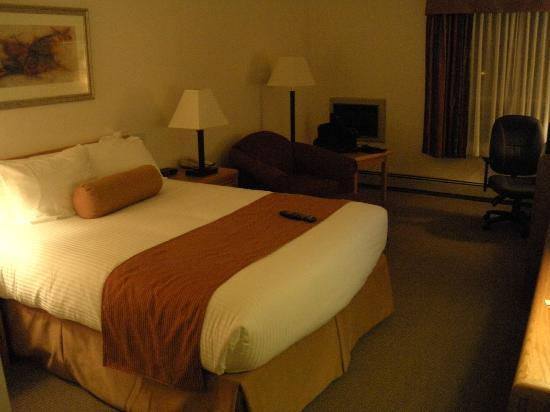 Best Western Plus Tower Inn: Standard Room