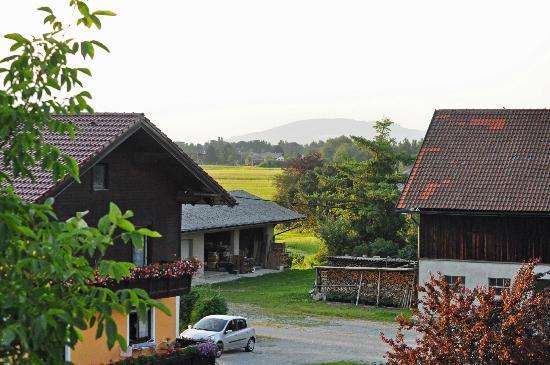 Haus Gassner-Pirnus: Back yard view from balcony