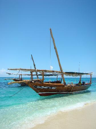 Safari Blue Tour: Two of our beautiful Safari Blue dhows